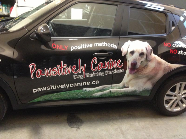 pawsitively-canine2